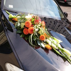 Wedding car decor with...
