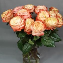 Kahala rose 50/70cm