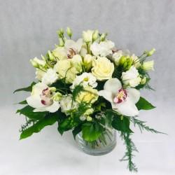 Balto ziedu noslēpums