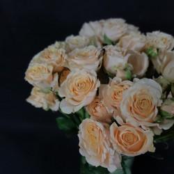 Light yellow roses 40/60/70cm